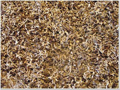 Pulpa de remolacha para la producción de pellets como alimento animal